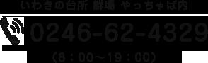 0246-62-4329
